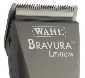 Bravura Lithium Review